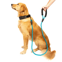 5 FT Strong Dog Leash with Padded Handle