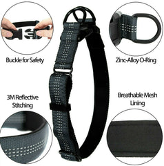 Adjustable Nylon Dog Collar, USA Seller 5 Colors Durable Small Medium Large Dogs