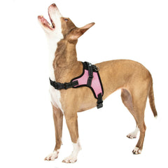 PINK NO Pull Adjustable Dog Pet Vest Harness Quality Nylon or Leash XS S M L XXL