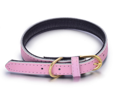 Genuine Soft Leather Dog Pet Collar Padded for Extra Comfort