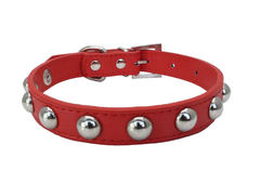 Small Studded Rivet Dog Leather Collar Puppy Cat Terrier Mini XS S M Adjustable