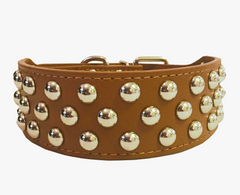 "NEW PU Leather Dog Collar Rivets Studs Pit Bull Terrier Pets Large L XL 2"" WIDE"