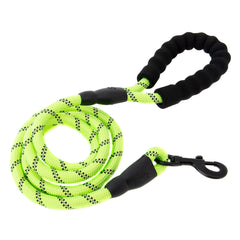 Reflective Nylon Dog Leash with Padded Handle