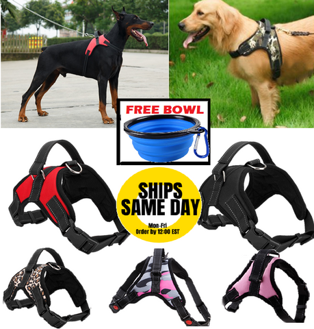 No Pull Adjustable Dog Pet Vest Harness Quality Nylon PLUS BOWL XS S M L XL XXL FREE BOWL