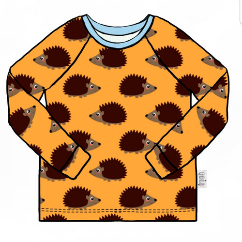 Hedgehog long sleeve top