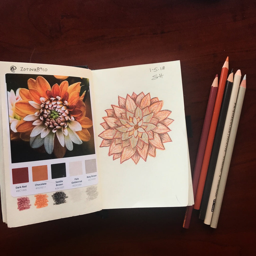 Botanical Illustration #5