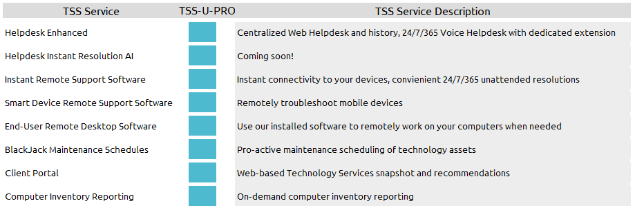 technology support suite features include remote support and helpdesk