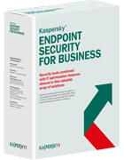 Kaspersky Endpoint Security for Business 1 year