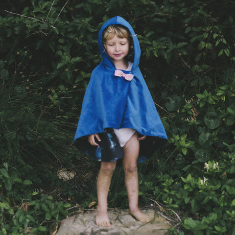 Royal Blue Cosmos 'Adventure Cape' - Reversible
