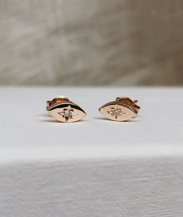 Rose Gold Star-dust Stud earrings