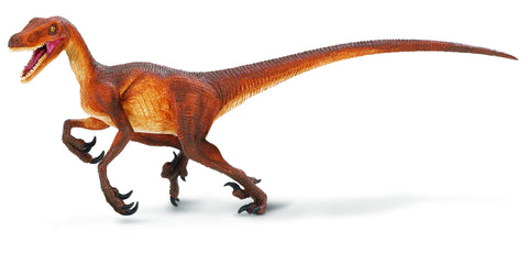 "Velociraptor, the ""Swift Plunderer"" lived in South America nearly 70 million years ago. Kids Dinosaur of the Month Club brings your loved ones this museum gift shop-quality piece measuring 8 and 1/4 inches long by 3 and 1/4 inches high."
