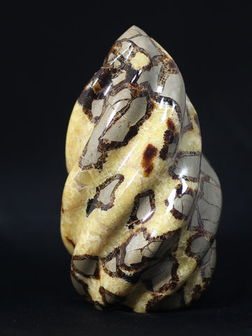 Septarian Nodule Flame Carving