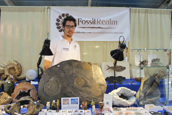 Peter Lovisek - Fossil Realm booth, Bancroft Trade Show