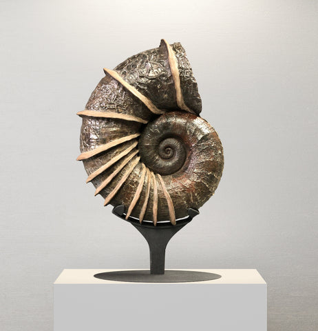 Large Bladed Ammonite, Lytoceras cornicupae