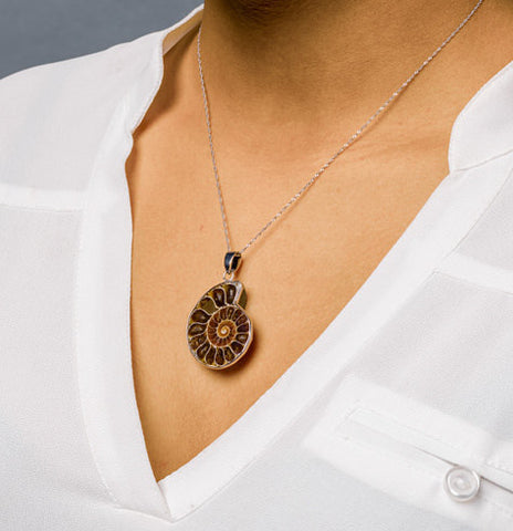 Sliced fossil ammonite pendant for sale fossil realm ammonite pendants for sale sliced fossil ammonite pendant dark 11 to 13 mozeypictures Images