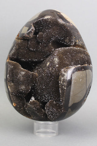 Beautiful Septarian Egg - 7.5 inches