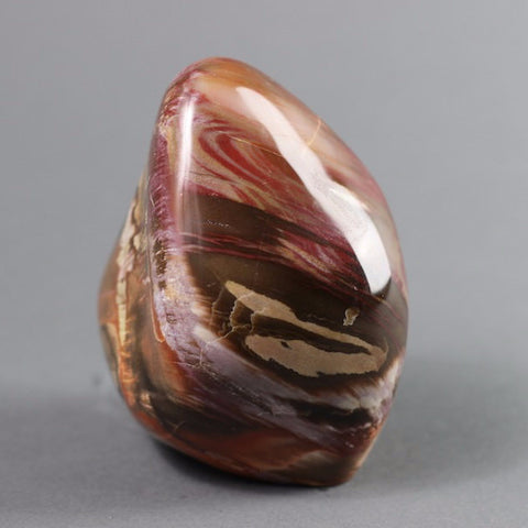 Polished Freeformed Petrified Wood, Madagascar - 4.6 inches