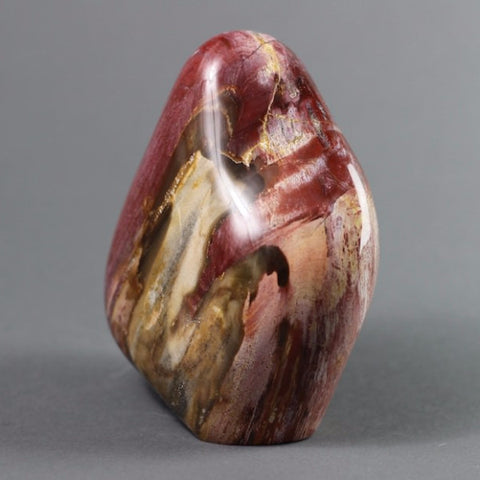 Polished Freeformed Petrified Wood, Madagascar - 5 inches