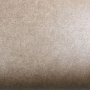 ROSEROSA Peel and Stick Flame retardation PVC Self-Adhesive Covering Countertop Concrete Beige FM730