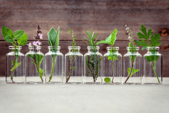 A line of glass jars holding sprigs of herbs like sage, basil, rosemary, thyme, parsley, mint, and thyme against a wooden backdrop.