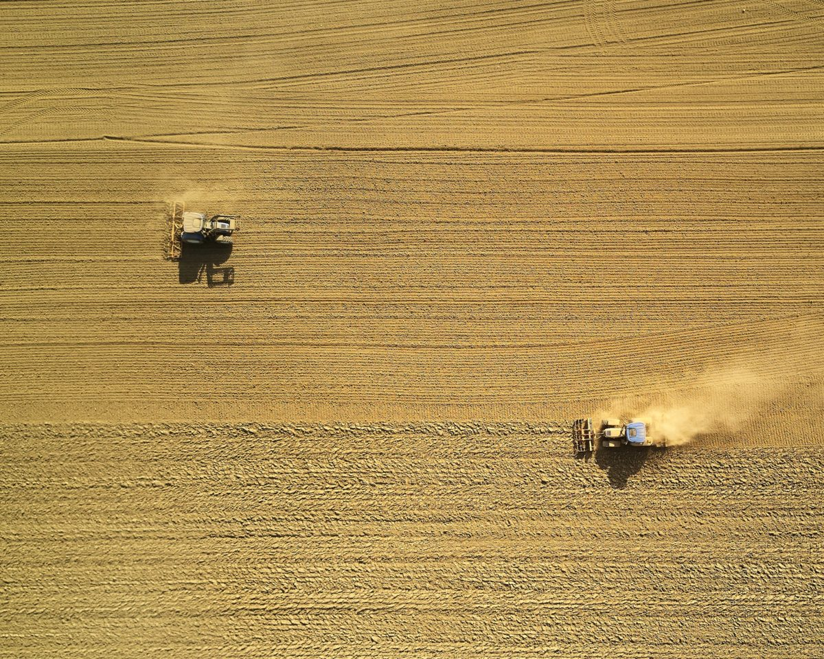 Aerial view of two tractors in a farmer's field harvesting a yellow field of wheat.