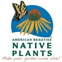 American Beauties® Native Plants