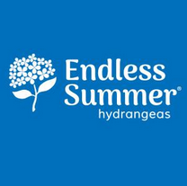 Endless Summer®