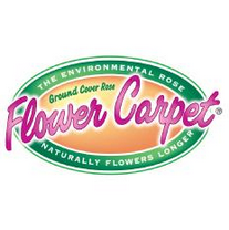 Flower Carpet®