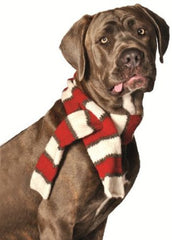 Chilly Dog Pet Scarf, Large - Chicago English Bulldog Rescue - eBully Boutique  - 1