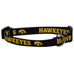 Univ of Iowa Collar - Chicago English Bulldog Rescue - eBully Boutique