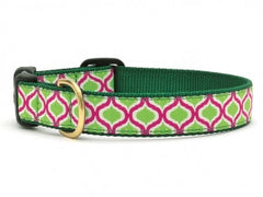 Up Country Green Kismet Dog Collar - Chicago English Bulldog Rescue - eBully Boutique