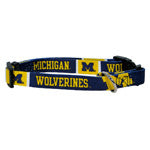 Univ of Michigan Collar - Chicago English Bulldog Rescue - eBully Boutique