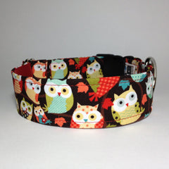 Moxino Owls Dog Collar - Chicago English Bulldog Rescue - eBully Boutique