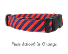 BWC Prep School Orange Dog Collar - Chicago English Bulldog Rescue - eBully Boutique