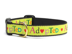 Up Country Adopted Dog Collar - Chicago English Bulldog Rescue - eBully Boutique