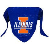 University of Illinois Mesh Dog Bandana - Chicago English Bulldog Rescue - eBully Boutique