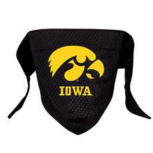 University of Iowa Mesh Dog Bandana - Chicago English Bulldog Rescue - eBully Boutique