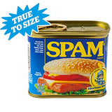 SPAM Can Safe