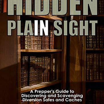 Hidden In Plain Sight: A Prepper's Guide to Hiding, Discovering, and Scavenging Diversion Safes and Caches - DIY hidden compartments and diversion safes, build you own secret compartment to keep your money and valuables safe and avoid theft and stealing by burglars -Secret Stashing