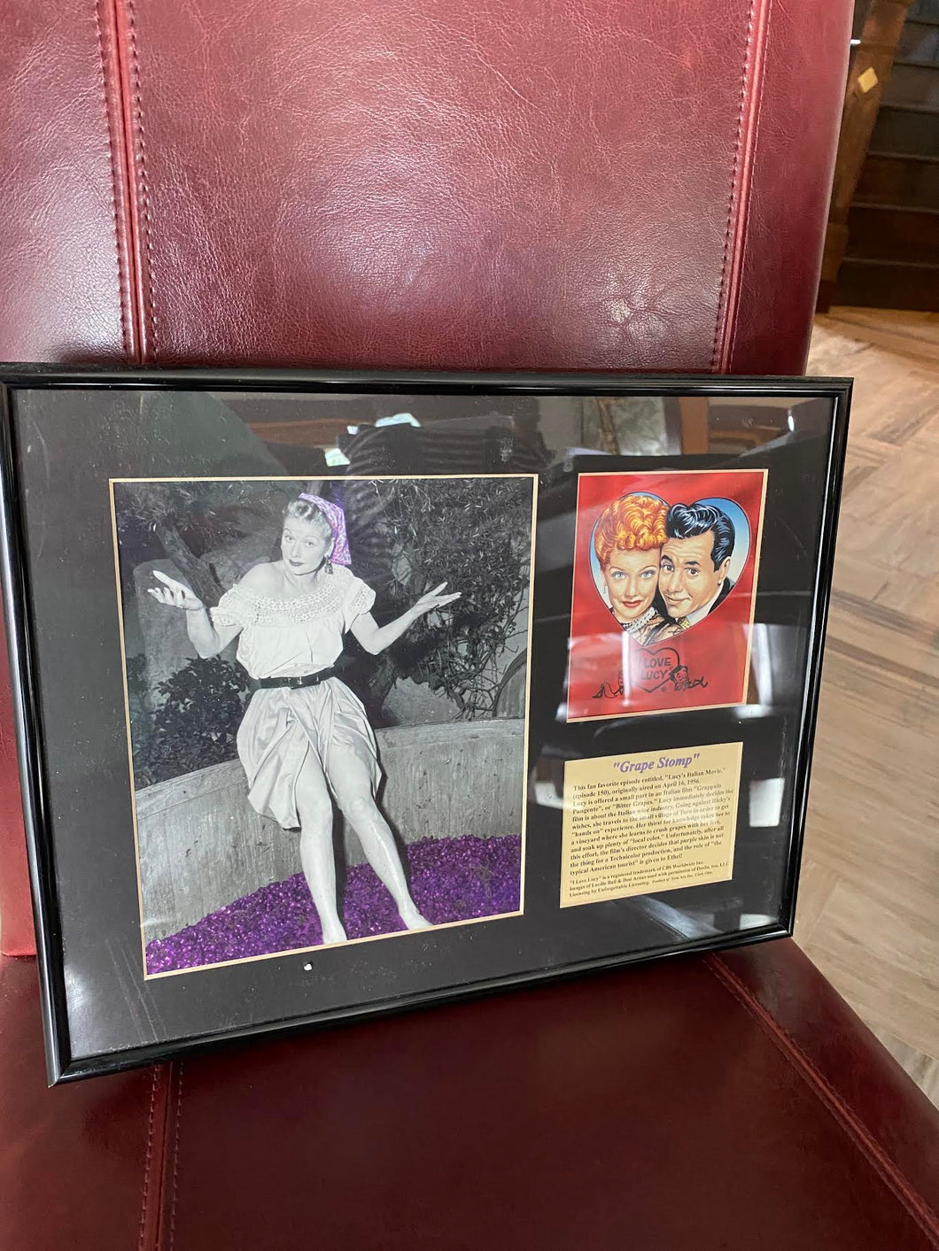 GRAPE FRAMED ART