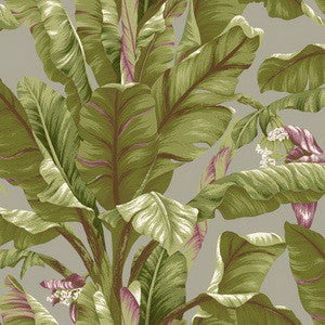 Banana Leaf - AT7069 Wallpaper