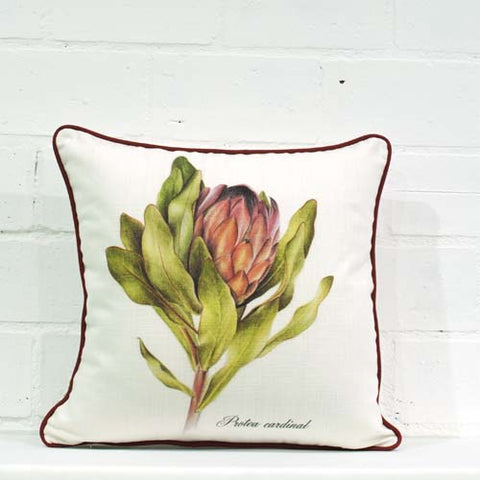 Compacta Single Cushion Cover
