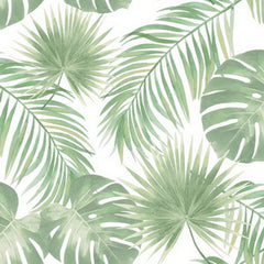 Coconut Grove - Fresh Wallpaper