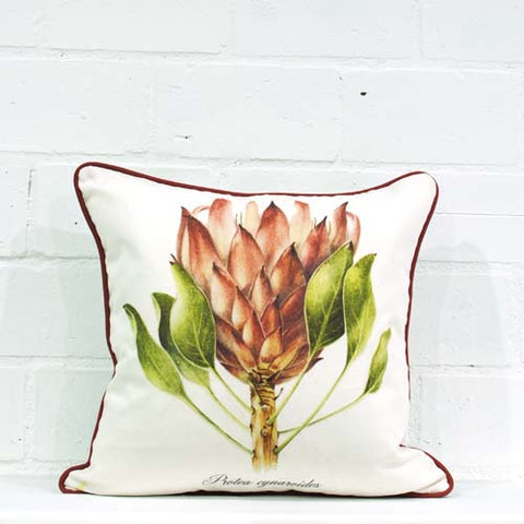 Cynaroides Single Cushion Cover