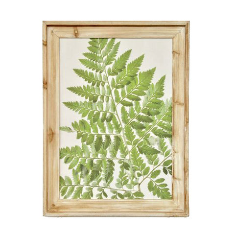 Green Fern Framed Picture 2