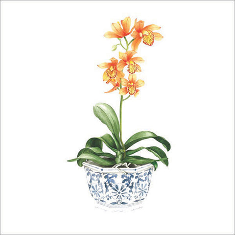 Orange orchid in blue and white pot  - Watercolours