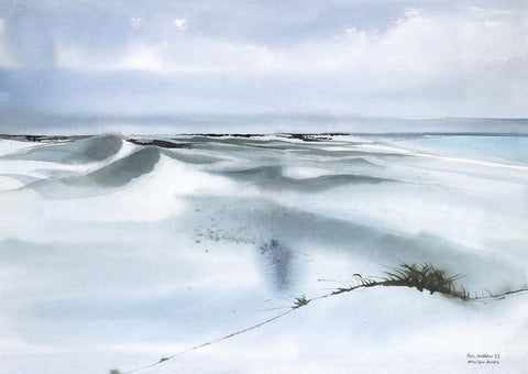 The Arniston Dunes | Paul Andrew Paintings