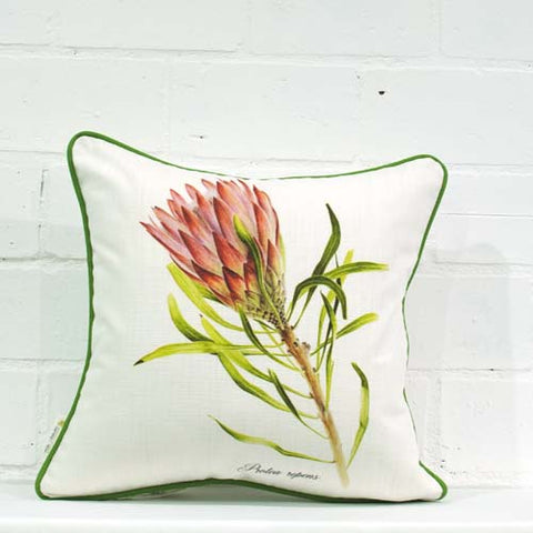 Red Repens Single Cushion Cover