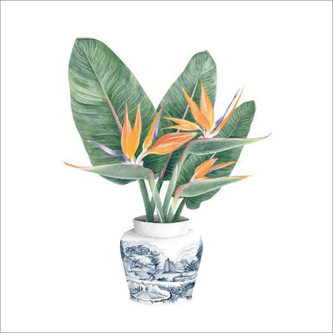 Strelitzias in vase - Watercolour painting