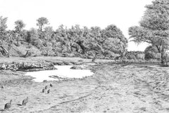 'Waterhole' Pencil drawing